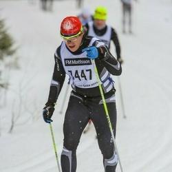 Skiing 90 km - Henrik Wallin (7447)