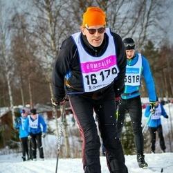 Skiing 90 km - Bo Larsson (16179)