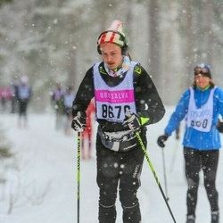 Skiing 90 km - August Qvick (8676)