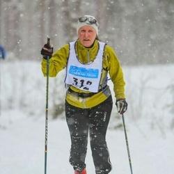 Skiing 90 km - Carola Olsson (312)
