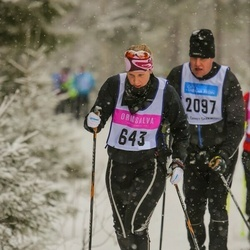 Skiing 90 km - Charlotte Lundqvist (643)