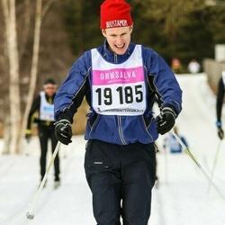 Skiing 90 km - Christian Ludvigsson (19185)