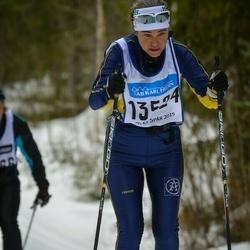 Skiing 90 km - Christina Hagberg (13524)