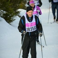 Skiing 90 km - Anders Roos (16356)