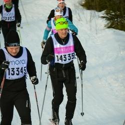Skiing 90 km - Åke Svensson (14335)