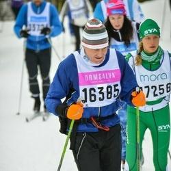 Skiing 90 km - Ulf Nyberg (16385)