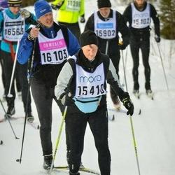 Skiing 90 km - Ylva Dandanell Daveby (15410)