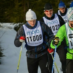 Skiing 90 km - Carl Johnson (11008)