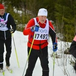 Skiing 90 km - Nils-Erik Johansson (17492)