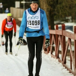 Skiing 90 km - Arne Wahlberg (13096)