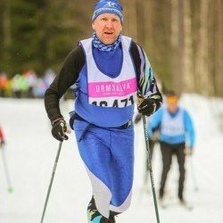 Skiing 90 km - Christer Pettersson (16471)