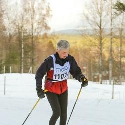 Skiing 90 km - Christina Sahlberg (11074)