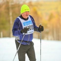 Skiing 90 km - Malin Palmér Andersson (15805)