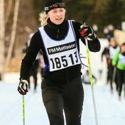Skiing 90 km - Jenny Nilsson (18513)