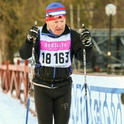Skiing 90 km - Bo Karlsson (18163)
