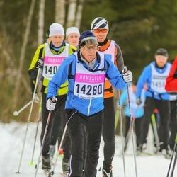 Skiing 90 km - Bo Singman (14260)