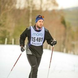 Skiing 90 km - Christian Berntsson (15481)