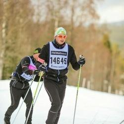 Skiing 90 km - Henrik Larsson (14645)