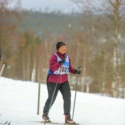 Skiing 90 km - Gunilla Krafft (11607)