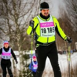 Skiing 90 km - Kjell Thoäng (18185)