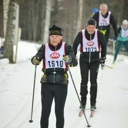 Skiing 45 km - Göte Alfredsson (1510)