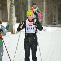 Skiing 45 km - Bengt Åkerström (3488)