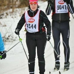 Skiing 45 km - Veronica Persson (2344)