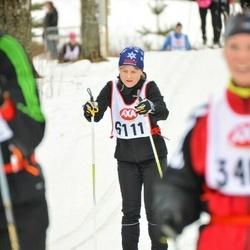 Skiing 45 km - Arjalingonstigen 73 Johansson (6111)
