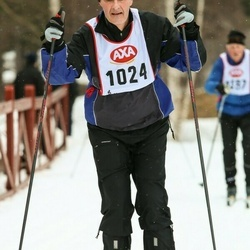 Skiing 45 km - Anders Johansson (1024)