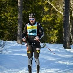 Skiing 90 km - Henrik Svensson (13085)