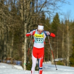 Skiing 90 km - Henrik Johnsen (12273)