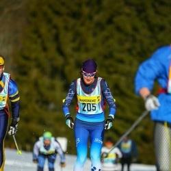 Skiing 90 km - Bente Skari (2053)