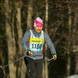Skiing 90 km - Christer Jacobsson (11063)