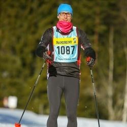 Skiing 90 km - Martin Lundgren (10873)