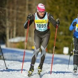 Skiing 90 km - Mikael Mehler (10953)