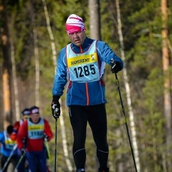 Skiing 90 km - Tommy Palmberg (12855)
