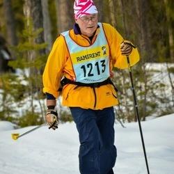 Skiing 90 km - Åke Lagervall (12135)