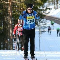 Skiing 90 km - Rikard Ström (13037)