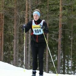 Skiing 90 km - Henrik Nises (8047)