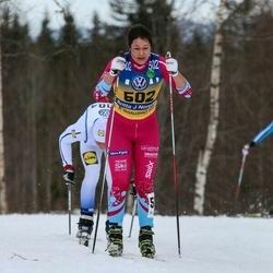 Skiing 90 km - Britta Johansson Norgren (502)