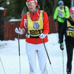 Skiing 90 km - Isolde Widmer (18027)