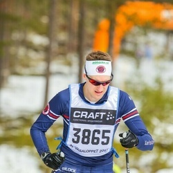 Skiing 90 km - Henrik Sandén (3865)