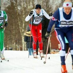 Skiing 90 km - Bjørnar Tollefsen (10615)
