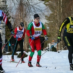 Skiing 90 km - Henrik Nilsson (10441)
