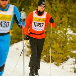 Skiing 90 km - Anders Andersson (11497)