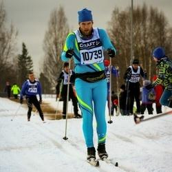 Skiing 90 km - Christian Claesson (10739)