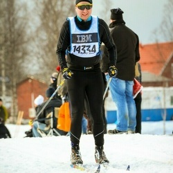 Skiing 90 km - André Flykt (14334)