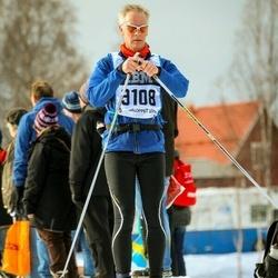 Skiing 90 km - Björn Jansson (9108)