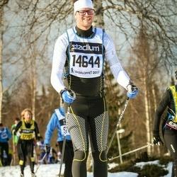 Skiing 90 km - Christian Severinsson (14644)