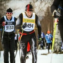 Skiing 90 km - Anders Söderberg (11494)